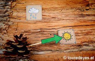 Wetterstation mit Tannenzapfen