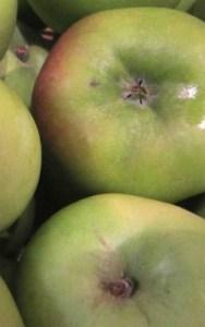 Apple Scrunch Pie