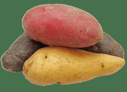 potato-2147541_640