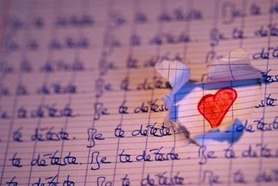 Je te déteste (mais je t'aime) | Credit: http://www.flickr.com/photos/twistiti