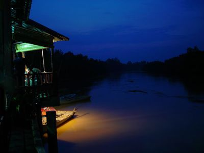 Kuala Selangor Firefly Sanctuary | Credit: http://www.flickr.com/photos/leafbug