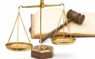 Legal Nutshell – Judicial Review