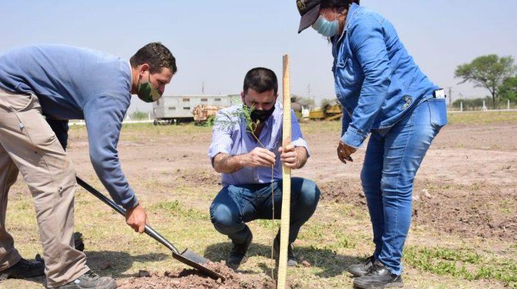 El municipio realizó plantación de árboles en el Parque Industrial