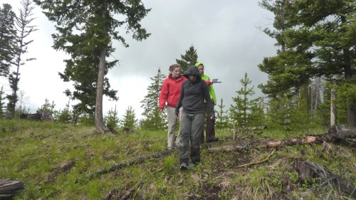 Here we are visiting Amanda's research site, looking for tiny mesh bags of seedlings. Amanda is wearing the red jacket.