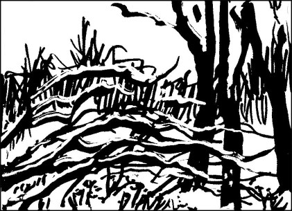 Winter Woods #1 I made this sketch right after that walk – I used big markers because that's all I could see