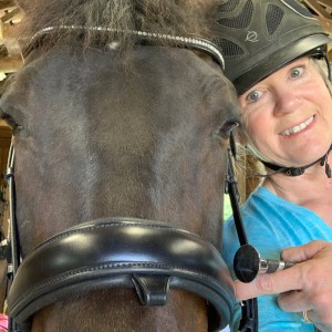 Letting Go In Order to Find Your Dream Horse