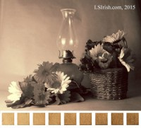 creating a sepia value tone scale from a photograph for wood burning
