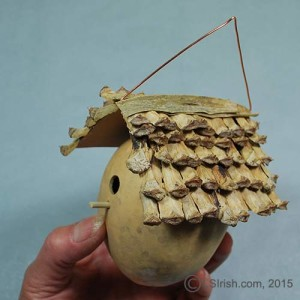 Gourd Bird House Free Craft Project