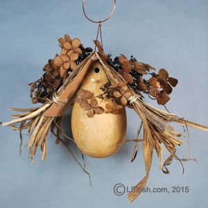 Bird House Gourds Free Craft Project