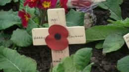 Red poppy on a cross