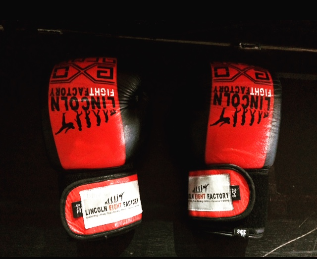 The official boxing gloves of Lincoln Fight Factory