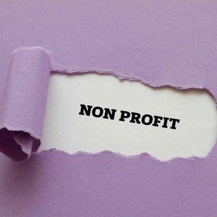 """Image of a purple background with a cutout reading """"non profit"""" to represent our first official announcement for the nonprofit."""