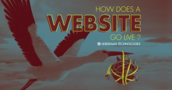 how does a website go live