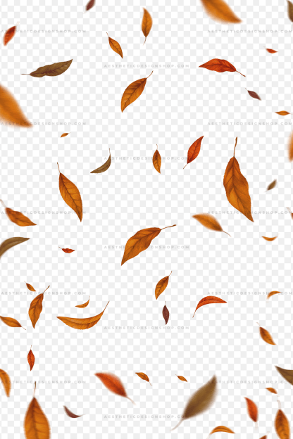 realistic-autumn-falling-leaves-png