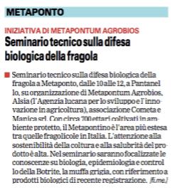 Fragola gazzetta 2 12 2015