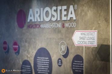 14- Ariostea