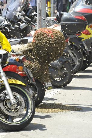 api piazza san babila