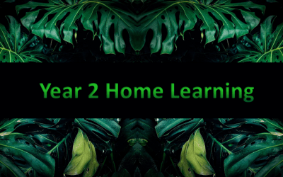 Year 2 Home Learning (4)