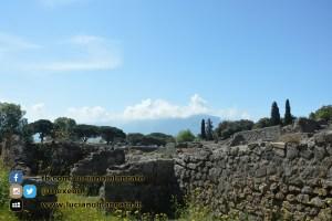 copy_13_Pompei - scavi - dettaglio rovine