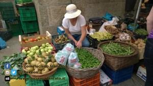 Santiago de Compostela - mercato massaie