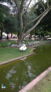 copy_25_Santiago de Compostela - Parco Alameda