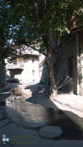 Tbilisi - 2014 - foto n 0086