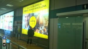 W1 Vueling a Barcellona - 2014 - foto n 0015
