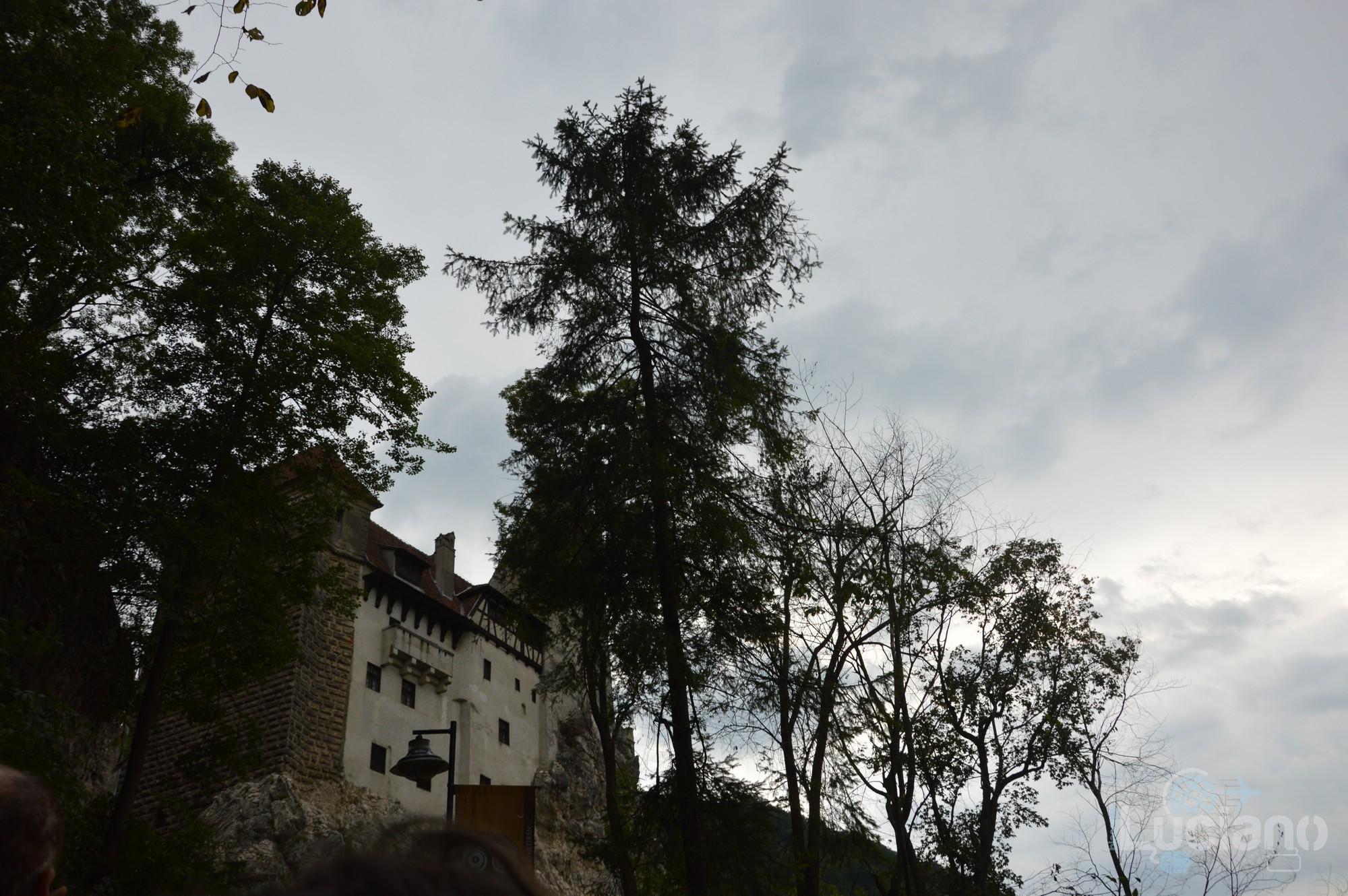 castello-di-dracula-castello-di-bran-luciano-blancato (9)