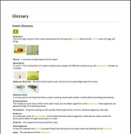 Fancy Green - Example Glossary (PDF)