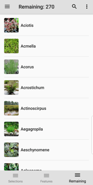 Aquarium and Pond Plants entities remaining screen