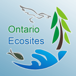Ecosites of Ontario icon