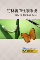bamboo_pests