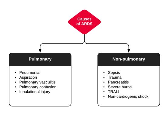 pleural Effusion, Pulmonary Embolism