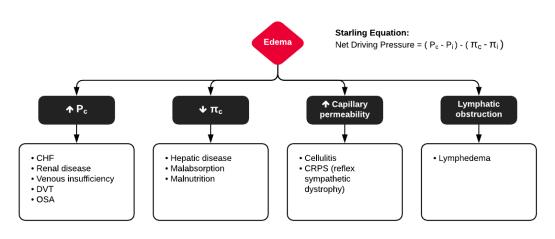 Mechanisms of Lower Extremity Edema