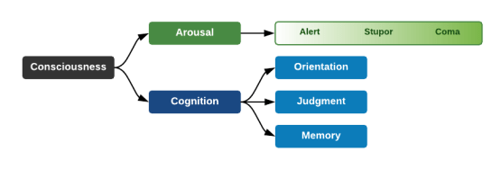 Components of Consciousness