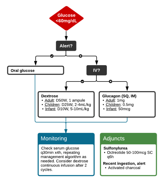 Management and Monitoring of Hypoglycemia
