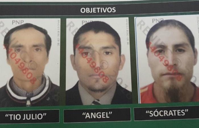 Caen tres presuntos integrantes del grupo terrorista Sendero Luminoso