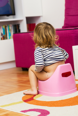 The Two Day Method Of Potty Training Lucies List
