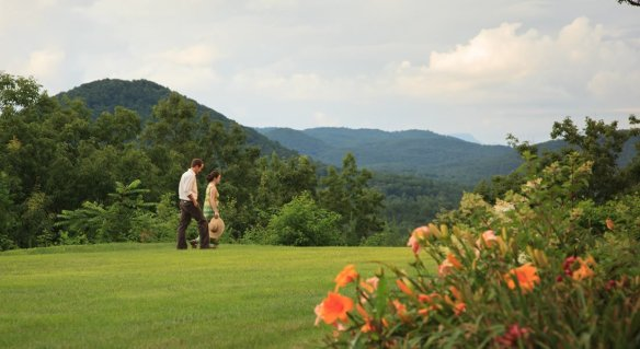 A couple walking thru the field with orange flowers in the foreground