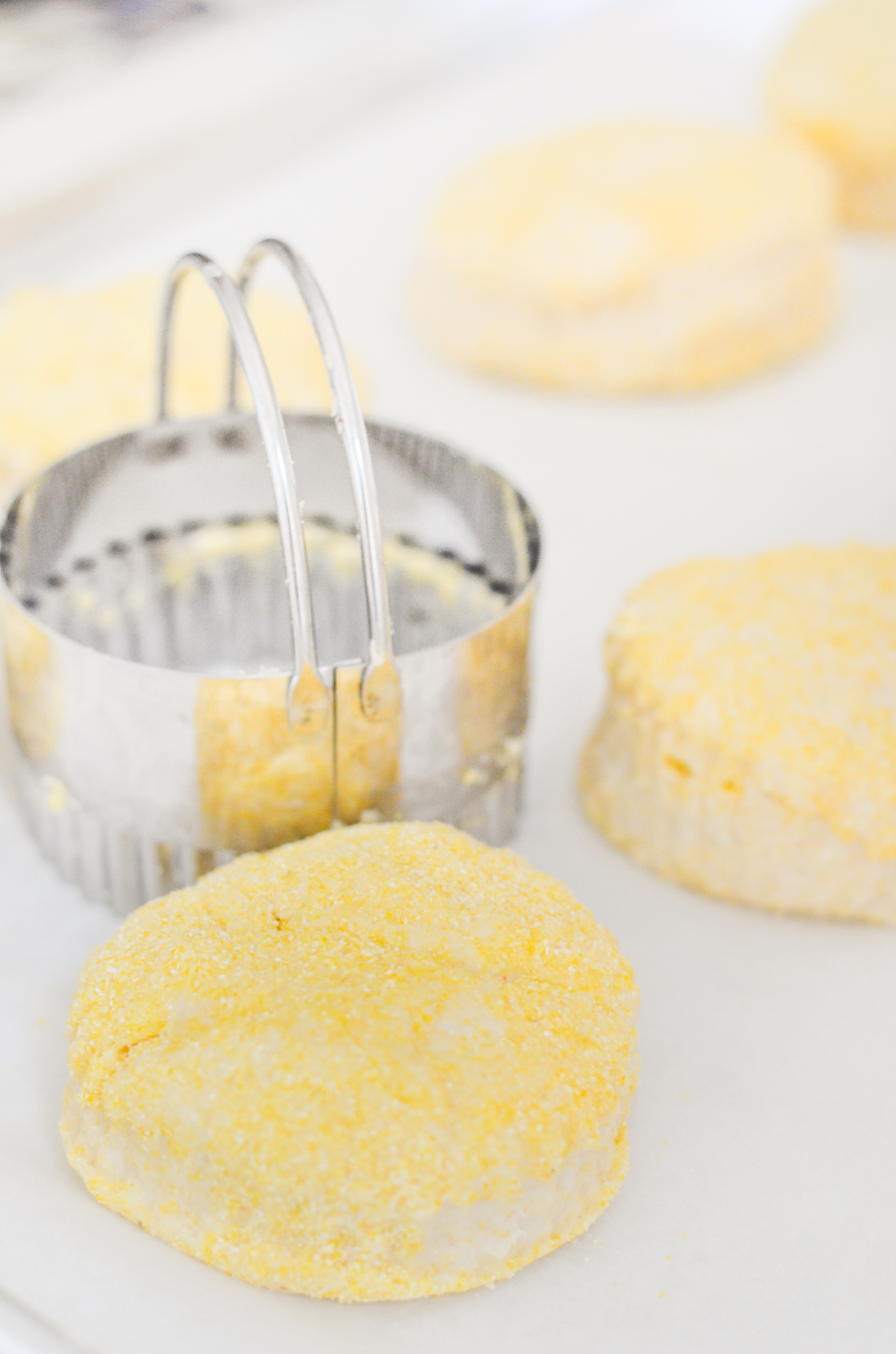 Homemade Butter Biscuits - Buttery Cornmeal Biscuits with Biscuit Cutter