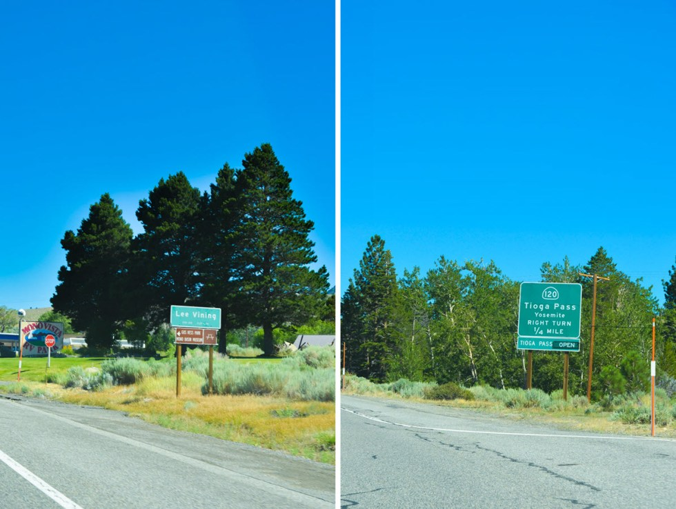 Highway 395 Photos Diary Reno, Nevada to Mono Lake, California | Lee Vining + Tioga Pass Road Signs | Luci's Morsels :: California Travel Blogger