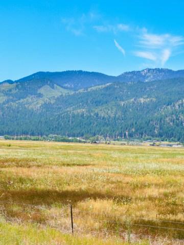 Highway 395 Photo Diary Reno, Nevada to Mono Lake, California- Luci's Morsels -- California Travel Blogger