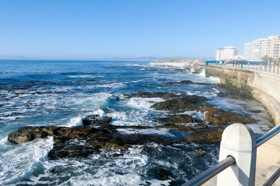 Activities in Cape Town Travel Blog - Sea Point Promenade