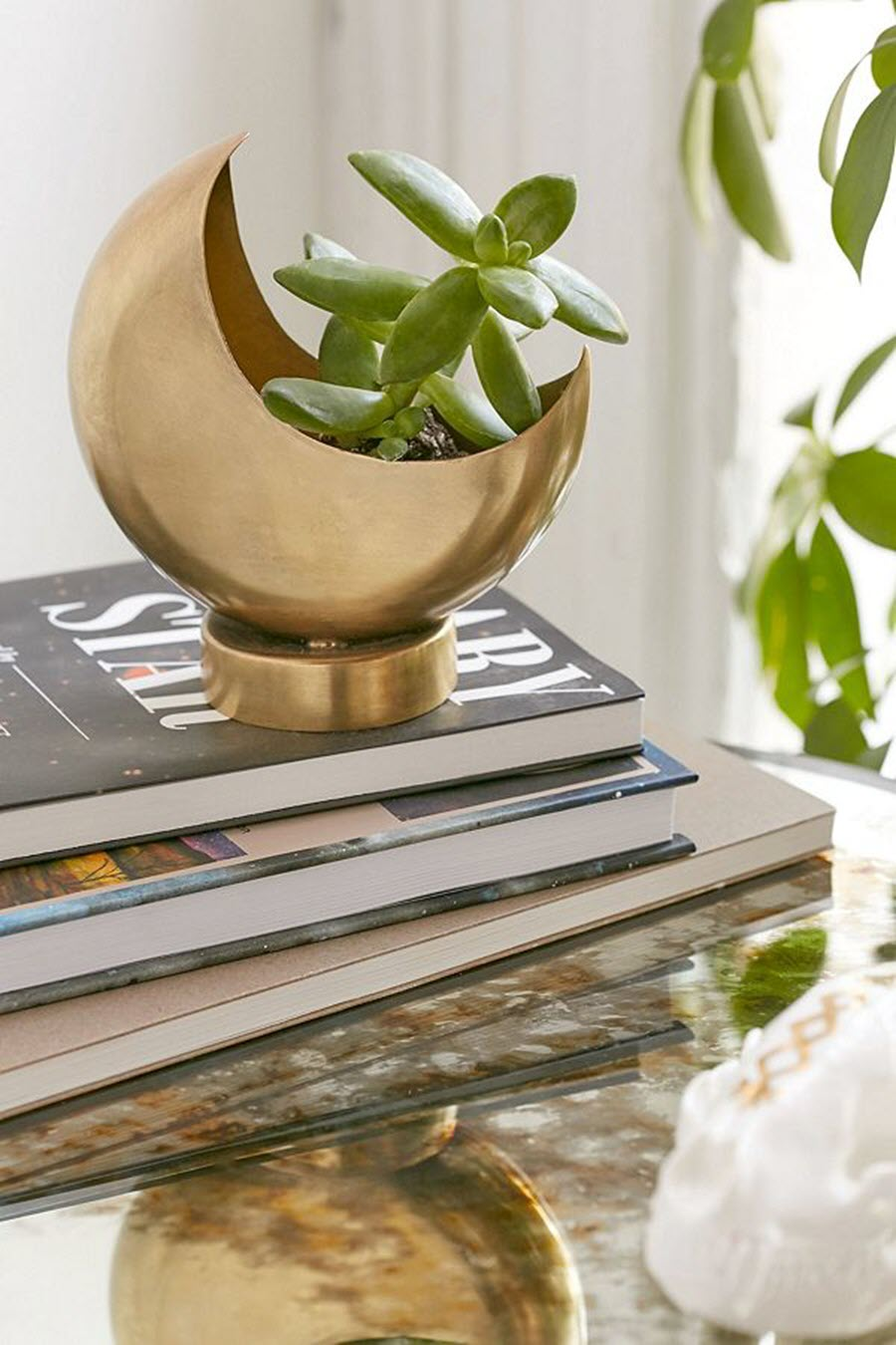 Indoor Plant Decor Ideas