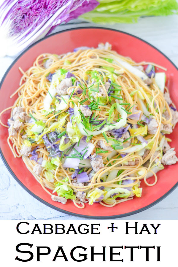 Cabbage + Hay Spaghetti. Easy weeknight dinner recipe for cabbage and pasta. Cut back on carbs with shredded cabbage. Made with ground turkey for a protein-filled, healthy weeknight dinner everyone in the family will enjoy!