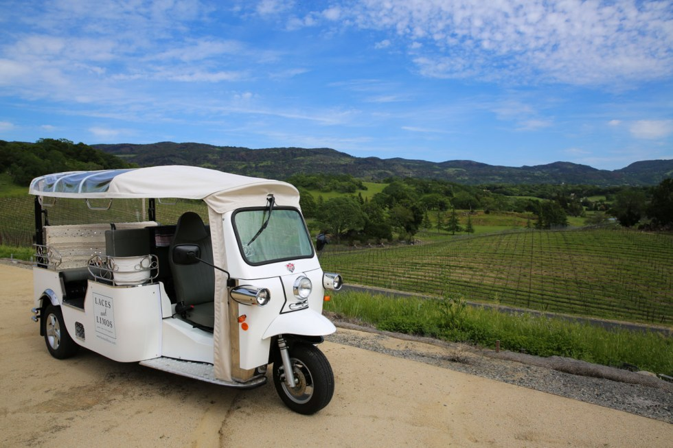 Best Napa Wine Tour - Laces & Limos Review