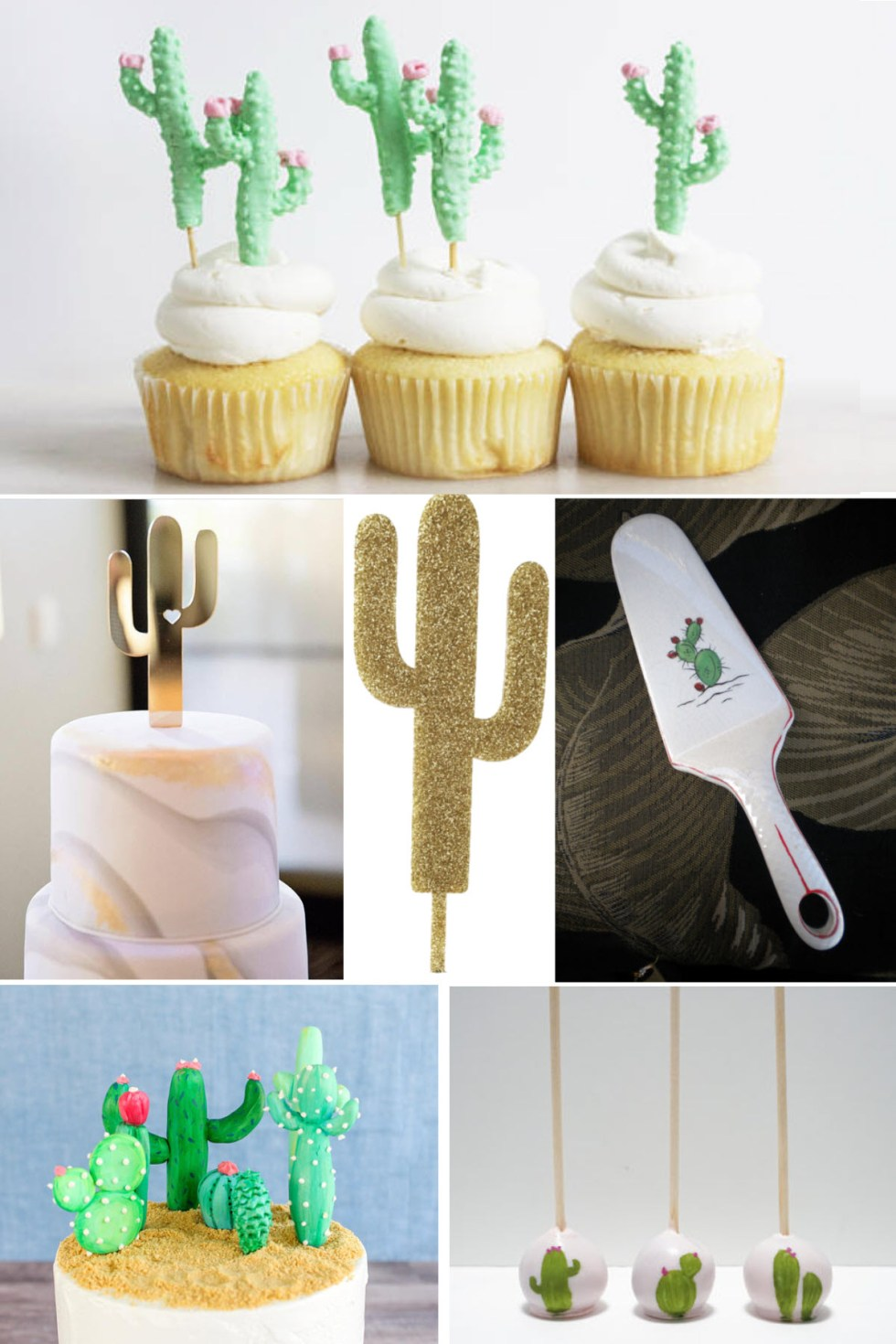 Cinco de Mayo Decorations Ideas. Succulent Party Decor