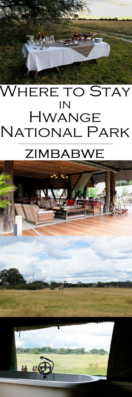 Where to Stay in Hwange National Park - The Hide Photo Review. Where to Stay in Hwange National Park - The Hide Photo Review. #africa #zimbabwe #hwange #zim #southafrica #traveblo #safari #safaris #travelblogger #blogger #lpworldtravels