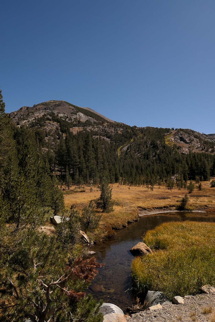 Yosemite in Fall Photos