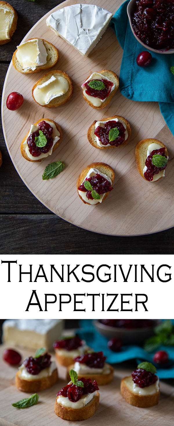 Brie Cranberry Appetizers - Crostini Thanksgiving Appetizer. This brie crostini recipe is easy and a fun way to get festive for a thanksgiving appetizer or a Christmas party appetizer. Recipe include directions for a fast, homemade cranberry sauce with red wine! #tahnskgiving #christmasparty #appetizer #crostini #brie #cranberrysauce #holidays